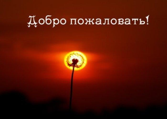 http://wenhamaniaforum.ucoz.ru/_fr/0/1809415.jpg